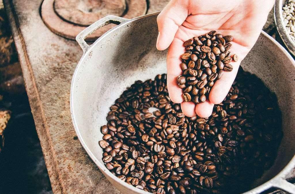 Arabica czy robusta: smak, różnice, co wybrać?