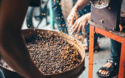Najdroższa kawa świata: ile kosztuje, co wpływa na cenę?